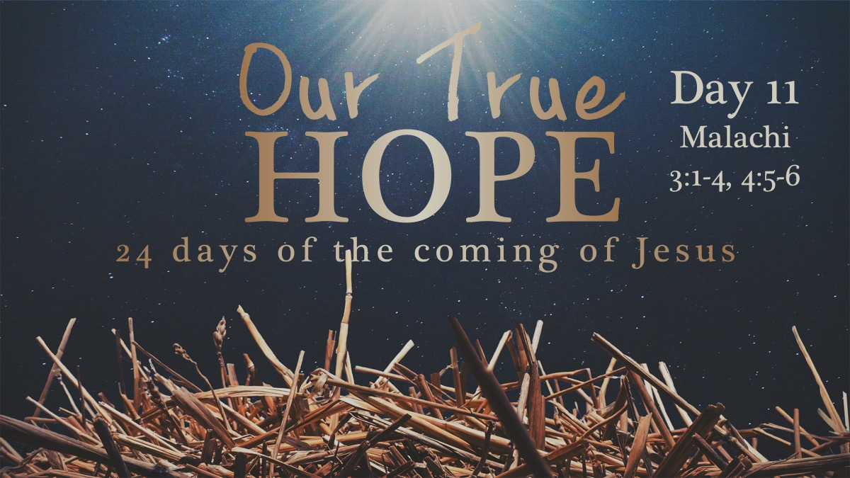 Our True Hope Day 11 – Who Can Stand